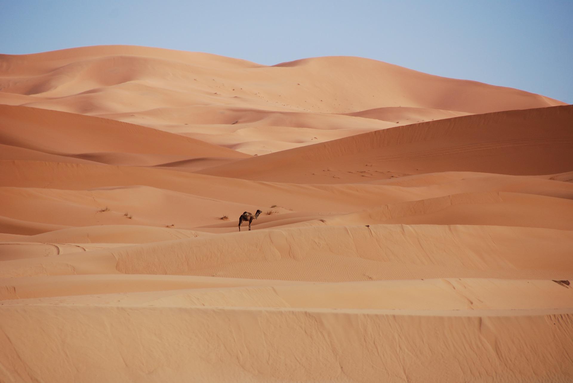 tour di gruppo in Marocco: Deserto del Sahara